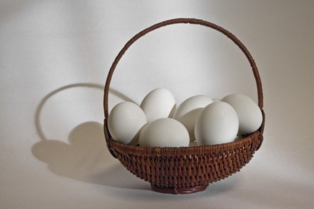 all eggs in one basket